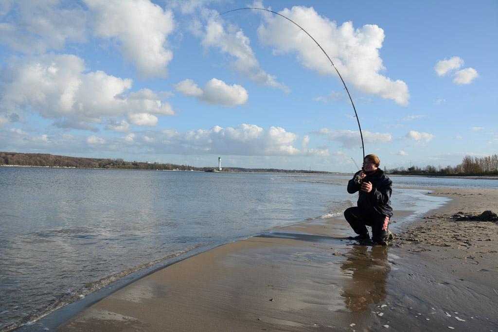 Wer beim Angeln in der Ostsee den Spaßfaktor sucht, sollte unbedingt einmal zu einer Feederangeln greifen.