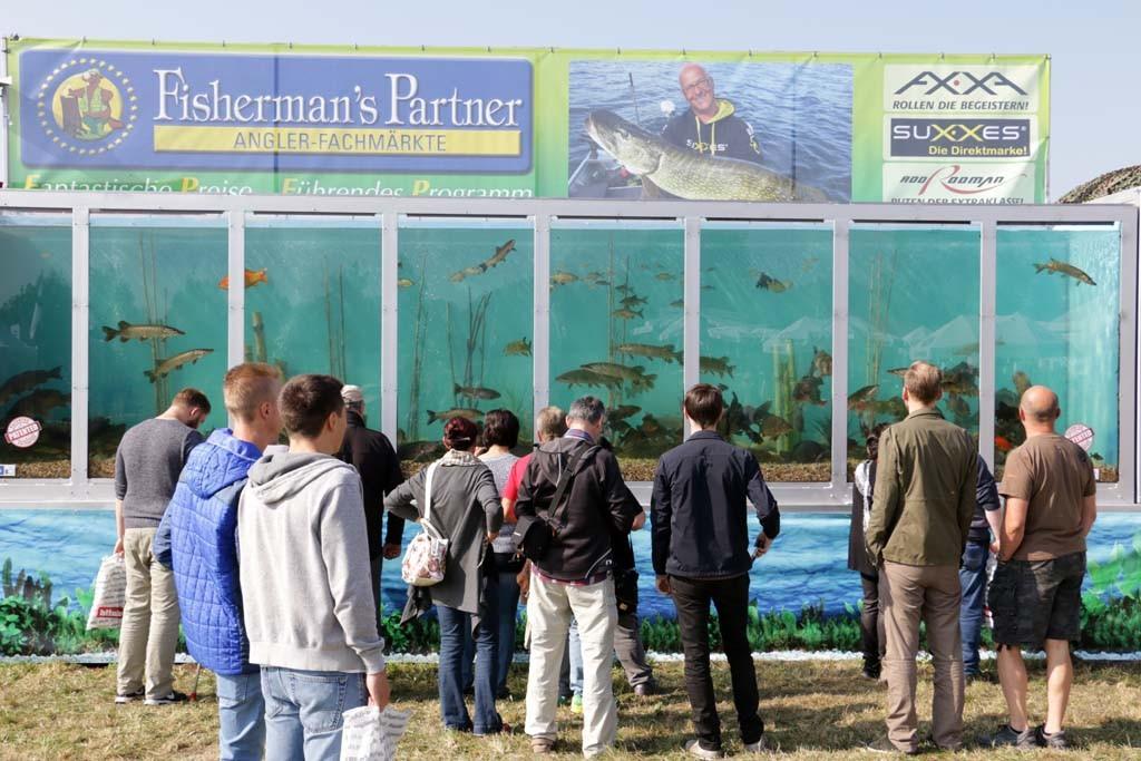 Das mobile Aquarium ist ein echter Besucher-Magnet.