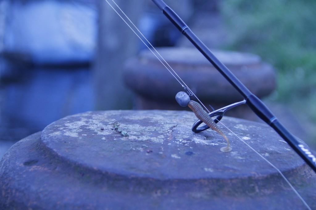 Mit kleinen Gummifischen konnten die Fischköppe am Abend abräumen.