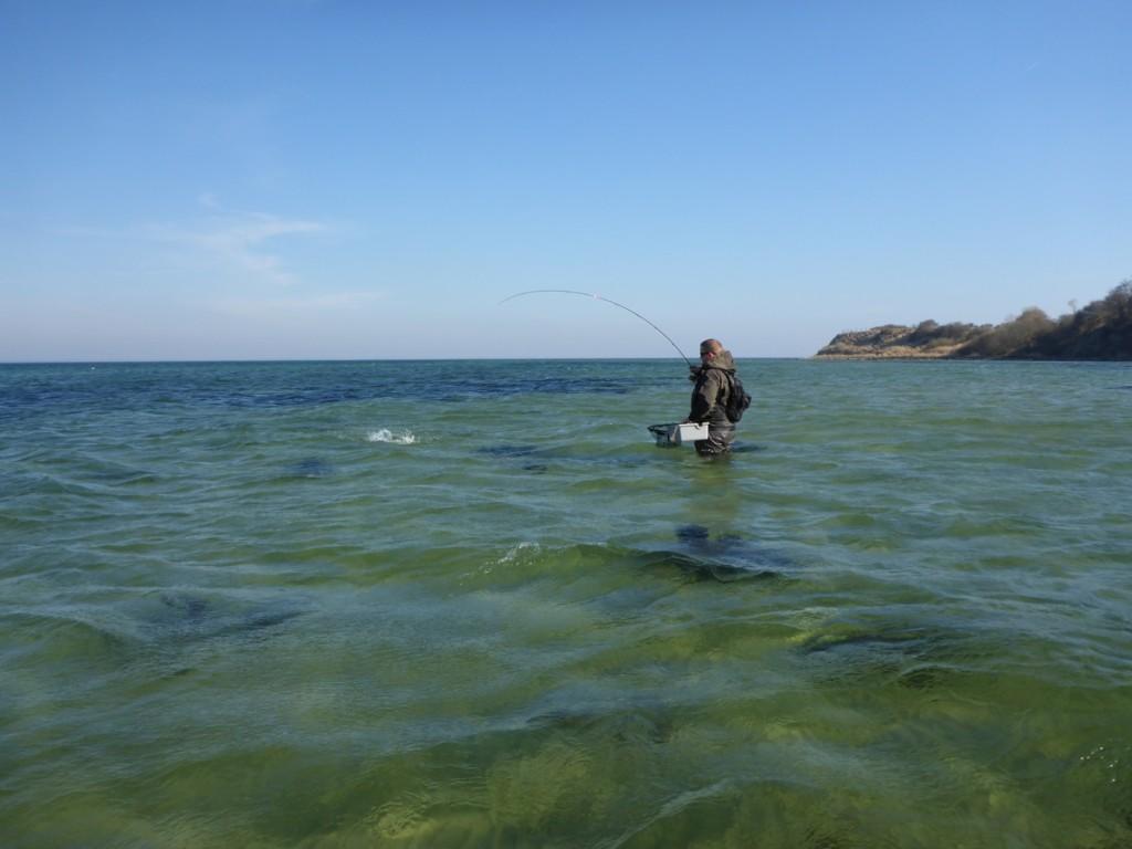 Drill auf einer Sandbank in Süd-Dänemark