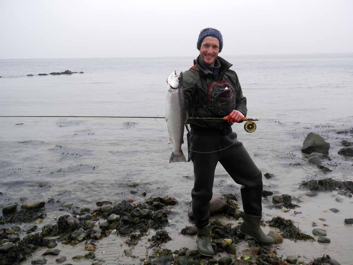 Die Meerforelle ist ein beliebter Zielfisch bim Angeln in der Ostsee.