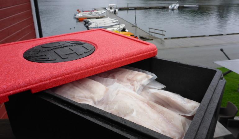 """Gefrorener Fisch bleibt in der """"The Box"""" problemlos zwei Tage lang tiefgefrorenen. Tipp: Nicht genutzter Stauraum mit Zeitungspapier auffüllen. Dadurch wird die Kälte noch besser gespeichert."""