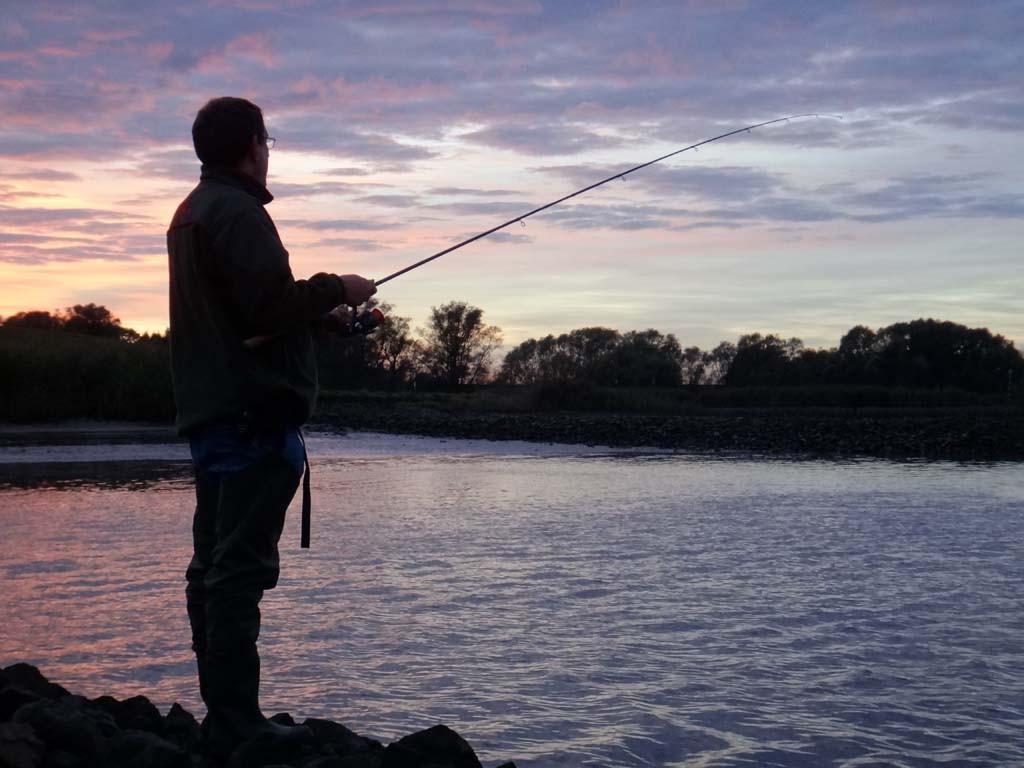 Beim Zanderangeln im Herbst stehen für uns Angler mehr Gewässerbereiche durch die Veränderung der Sprungschicht zur Verfügung.