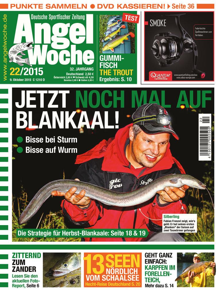 AngelWoche Ausgabe 22/2015