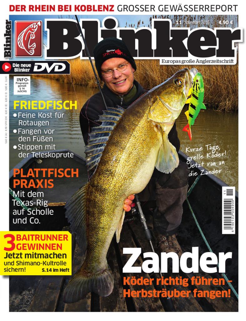 Blinker 11 2016 Titel November
