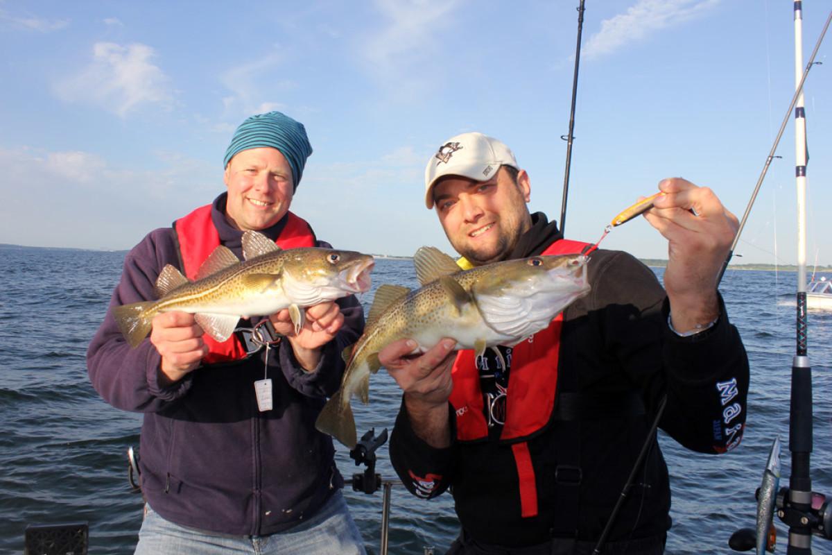 Neue Dorsch-Fangquoten 2017 für die Ostsee betreffen uns auch Angler.