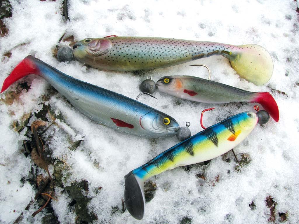 Dickbauchige Gummifische mit großem Schaufelschwanz sorgen für starke Druckwellen beim Hechtangeln im Winter.