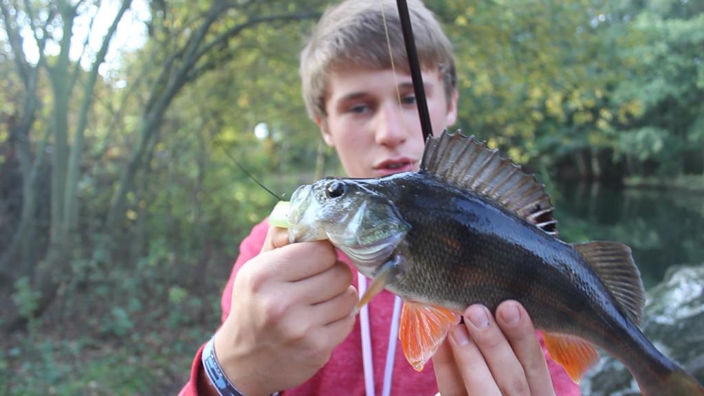 Robin ist ein echter Allround-Angler der neben seinen Zielfischen den Salmoniden auch gerne mal im Süßwasser auf Barsch & Co. angelt.