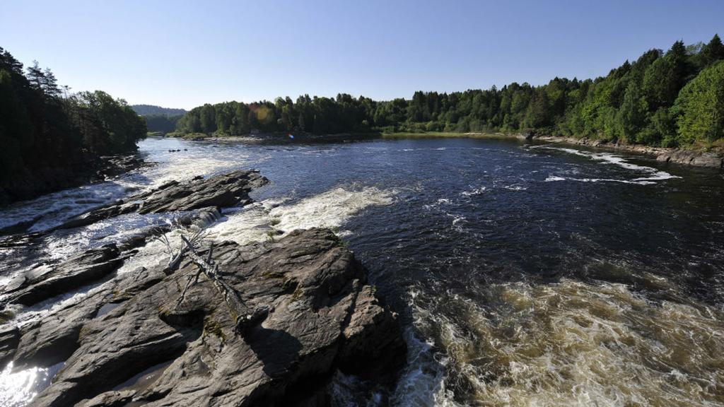 Beim Süßwasserangeln in Norwegen erwartet einem eine unberührte Natur mit Aussichten auf tolle Fänge.