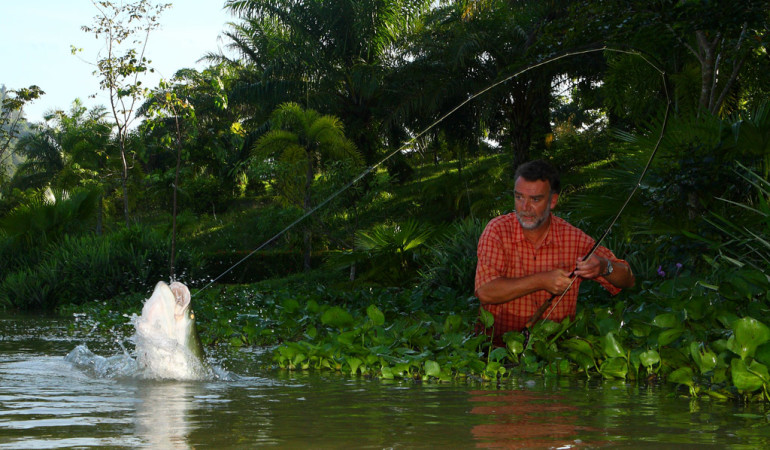 Angeln in Thailand: Arapaimas gehören zu den größten Süßwasserfischen der Welt. Sie können über zwei Meter lang werden und entwickeln eine enorme Kampfkraft, die einen Drill mehrere Stunden dauern lassen können.