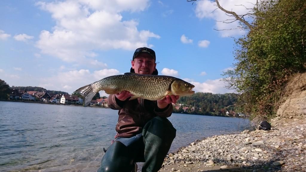 Der einzige Fisch des Tages, aber was für einer: Dieser 60er Döbel nahm den Wobbler von Alexis Zahn. Foto: A. Zahn