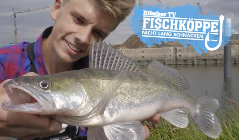 Fischkoeppe_Video_Trailer_bearbeitet-1