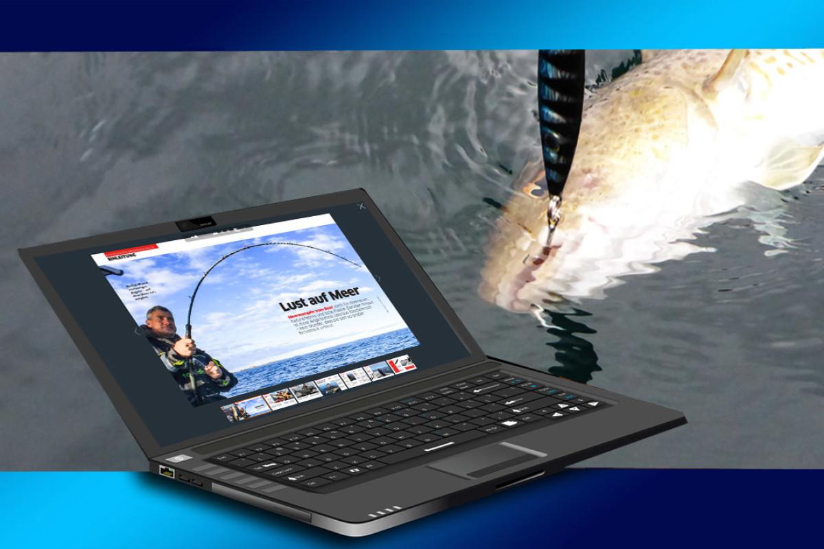 Meeresangeln vom Boot: In unserem neuen kostenlosen E-Mag erfährst Du alles wissenswerte rund um diese Angelei. Grafik: pb/S. Kaufmann
