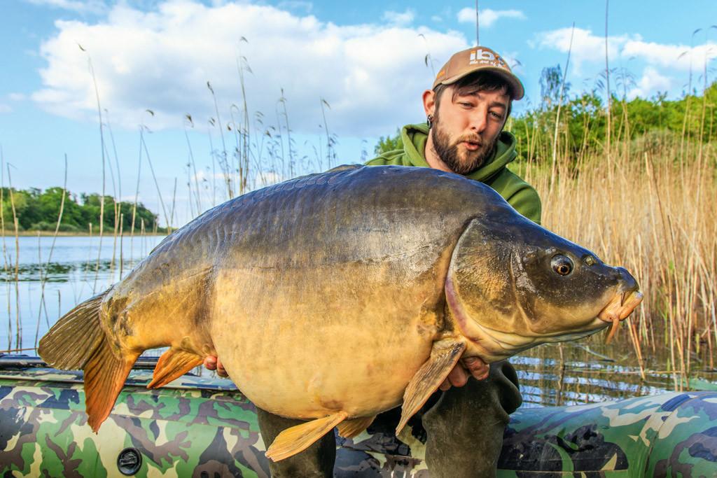 Dieser massive Spiegelkarpfen ging Julian mit den Crawfish-Boilies an den Haken.