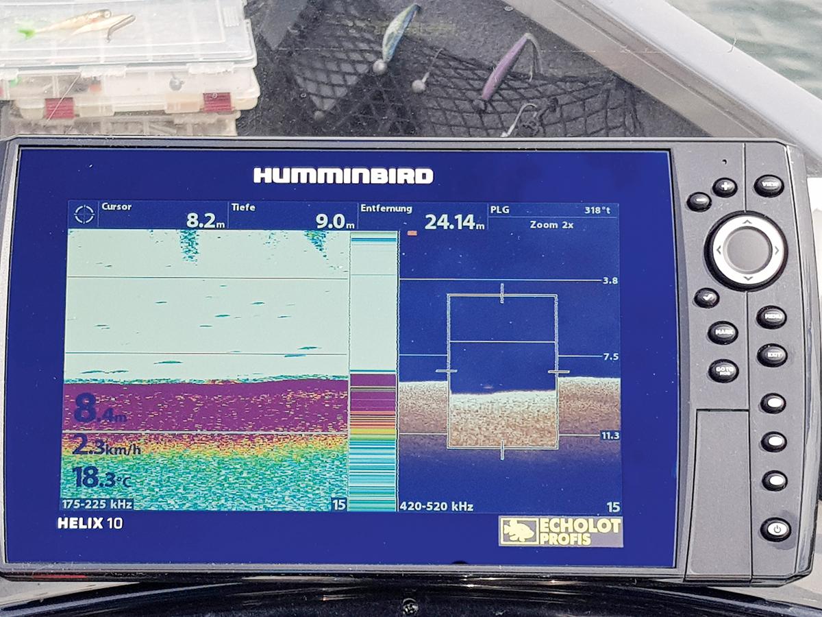Hier liegt ein Fisch flach auf dem Grund (linker Bildschirm). Erst die Down Imaging-Funktion (rechts) verrät ihn. Foto: BLINKER/S. Gockel