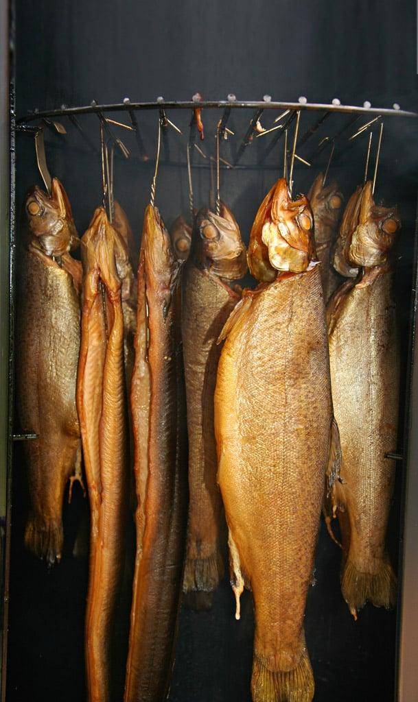 Ob Aal oder Forelle: Fast jeder Fisch lässt sich räuchern. Und schmeckt! Foto: BLINKER