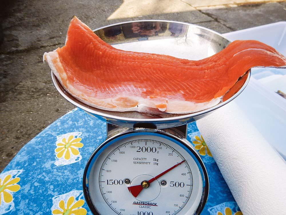 Um zu wissen, wie hoch Gewürz und Zucker dosiert werden müssen, wird das Fischfilet gewogen.