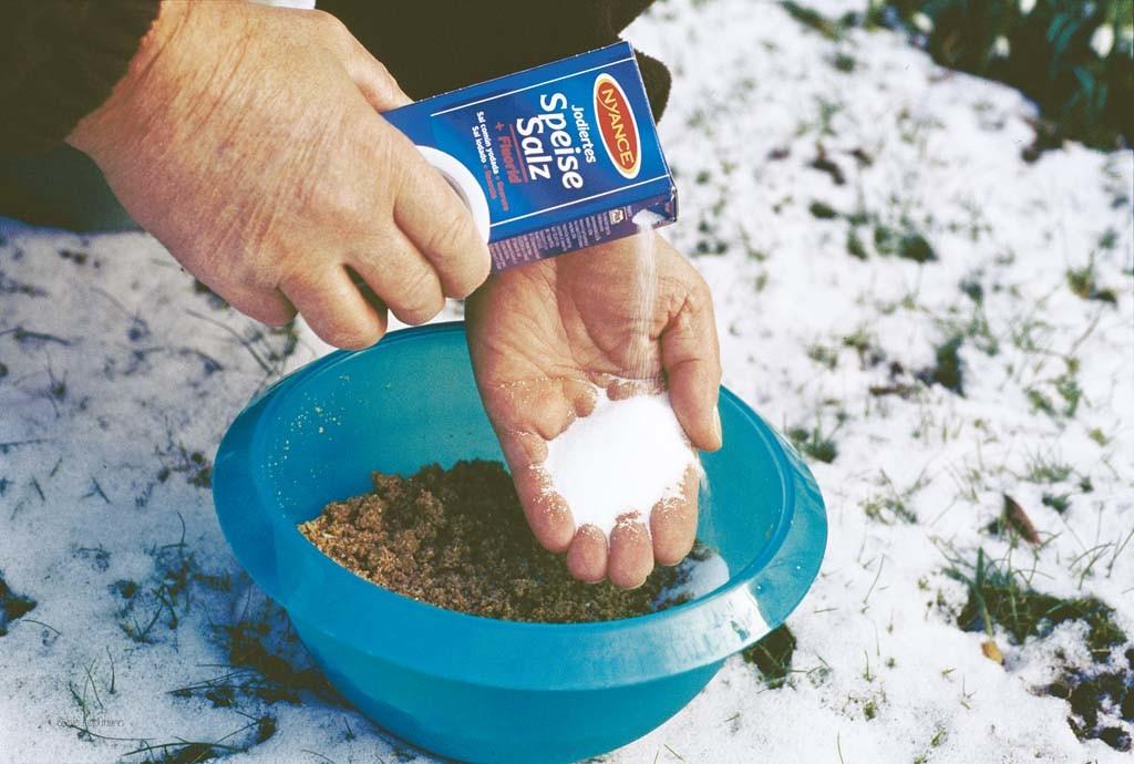 Das sprichwörtliche Salz in der Suppe, Entschuldigung Futter, kann beim Angeln im Winter oft den entscheidenden Vorteil bringen. Foto: Blinker