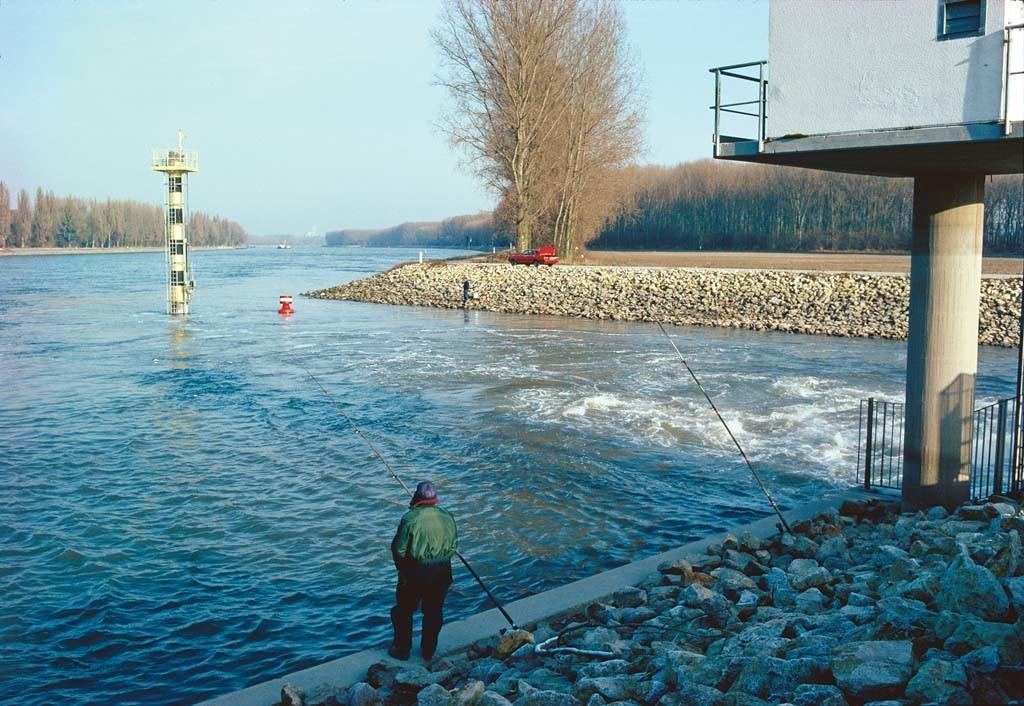 Warmwassereinläufe sind im Winter Top-Spots. Foto: Blinker