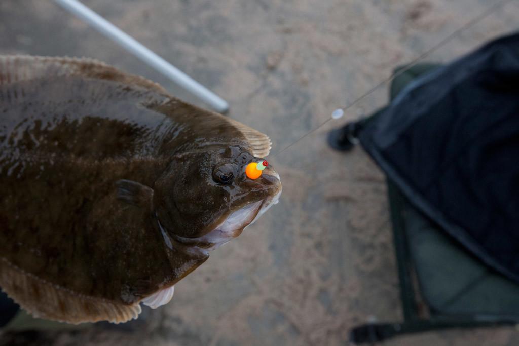 Auch die Wahl der Hakengröße sollte beim Plattfischangeln richtig gewählt werden. Foto: Blinker
