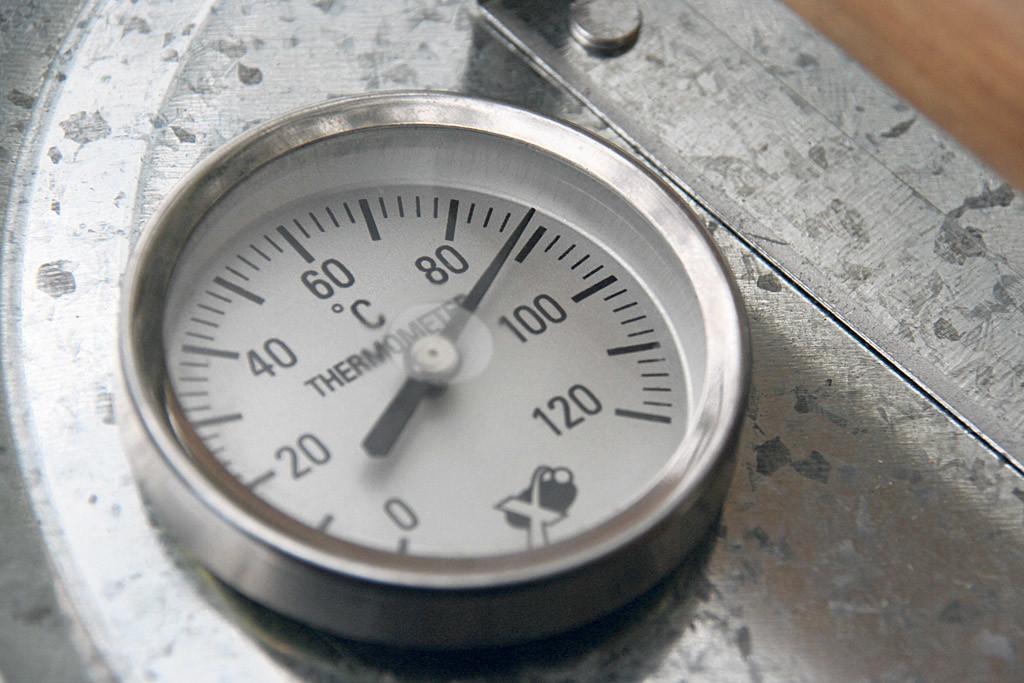 Bevor der Räuchervorgang startet, sollte der Ofen auf 90 Grad Celsius vorgeheizt werden. Foto: Blinker