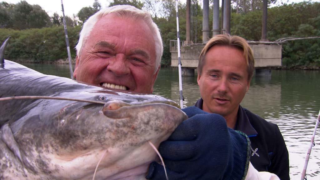 Angeln im Fernsehen: Horst Hennings und Guide Andy Gutscher mit einem Waller aus dem Po. Foto: NDR