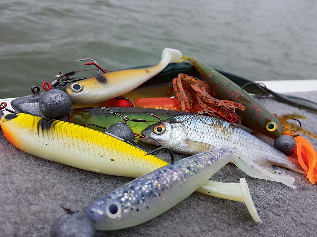 Beim Vertikalangeln funktionieren alle Arten von Gummiködern – und tote Köderfische. Gummis mit verschiedenen Schwanzformen von lebhafter bis hin zu kaum spürbarer Eigenaktion sollte man dabei haben.