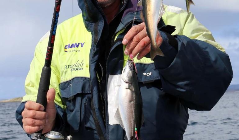 Der Köderfischvorrat ist gesichert. Foto: D. Figge