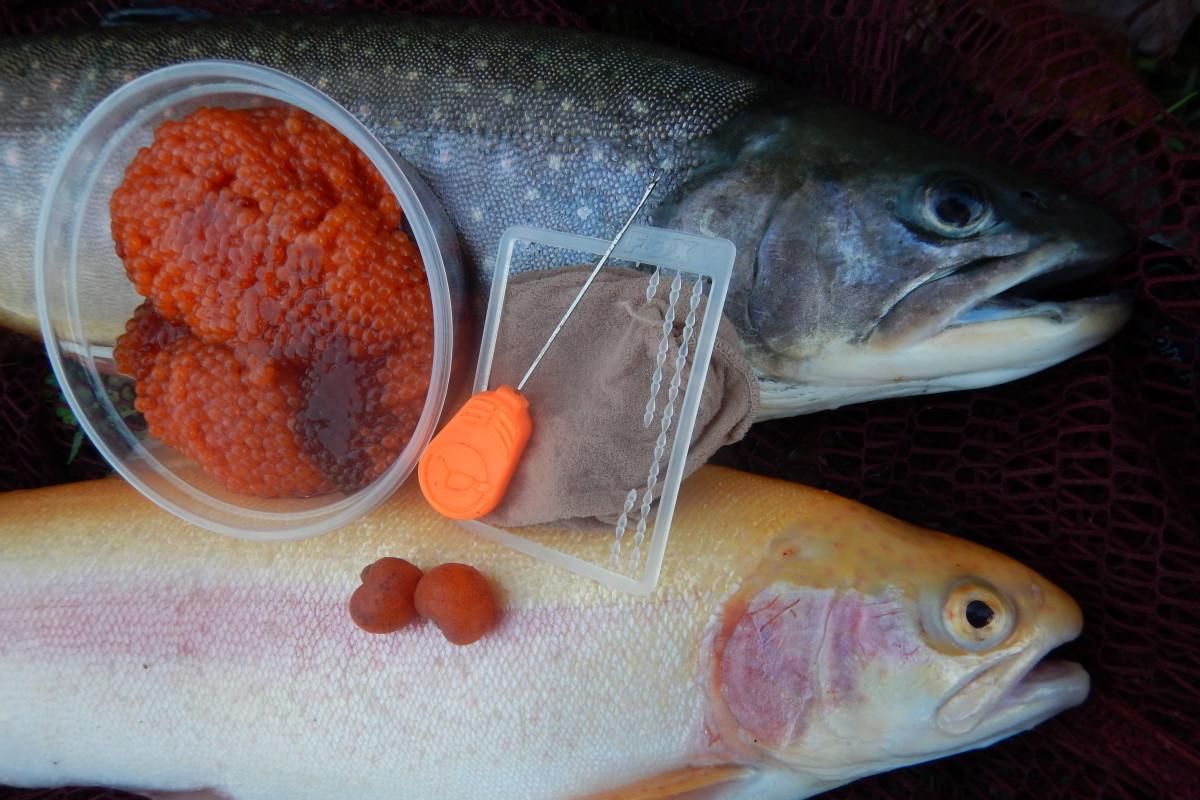 Forellenangeln mit Rogen: Rogen ist ein sehr guter Winterköder. Verpackt in ein Strumpfsäckchen kann man ihn besser einsetzen. Foto: G. Bradler