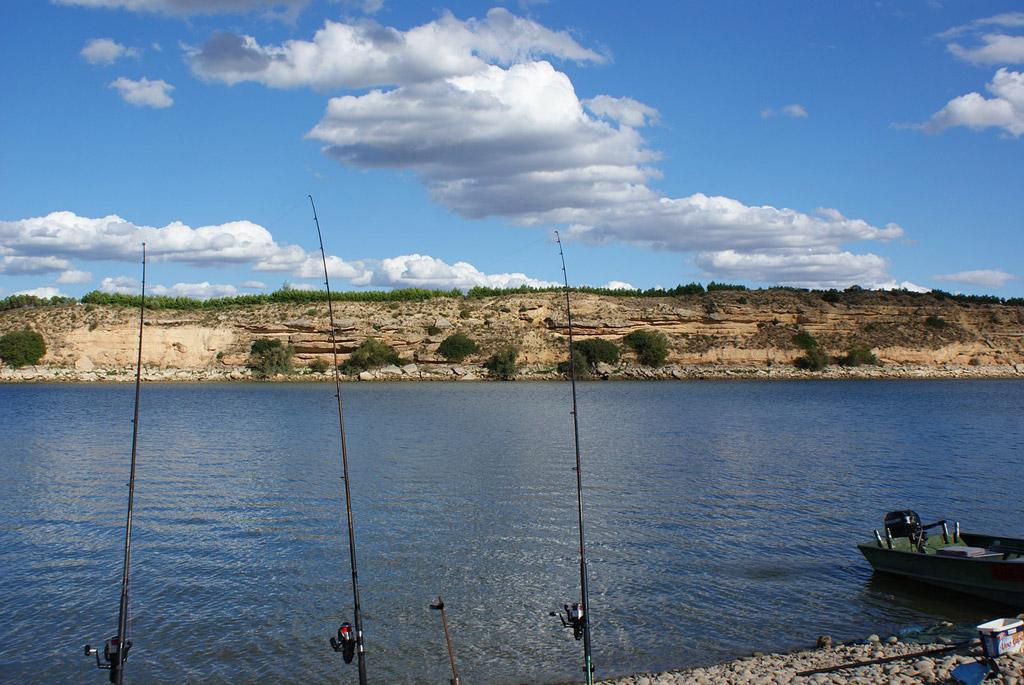 Beim Welsangeln hatten zwei Angler im Stausee Quitzdorf verbotenerweise mit lebenden Köderfischen geangelt und wurden dafür angeklagt. Foto: pb