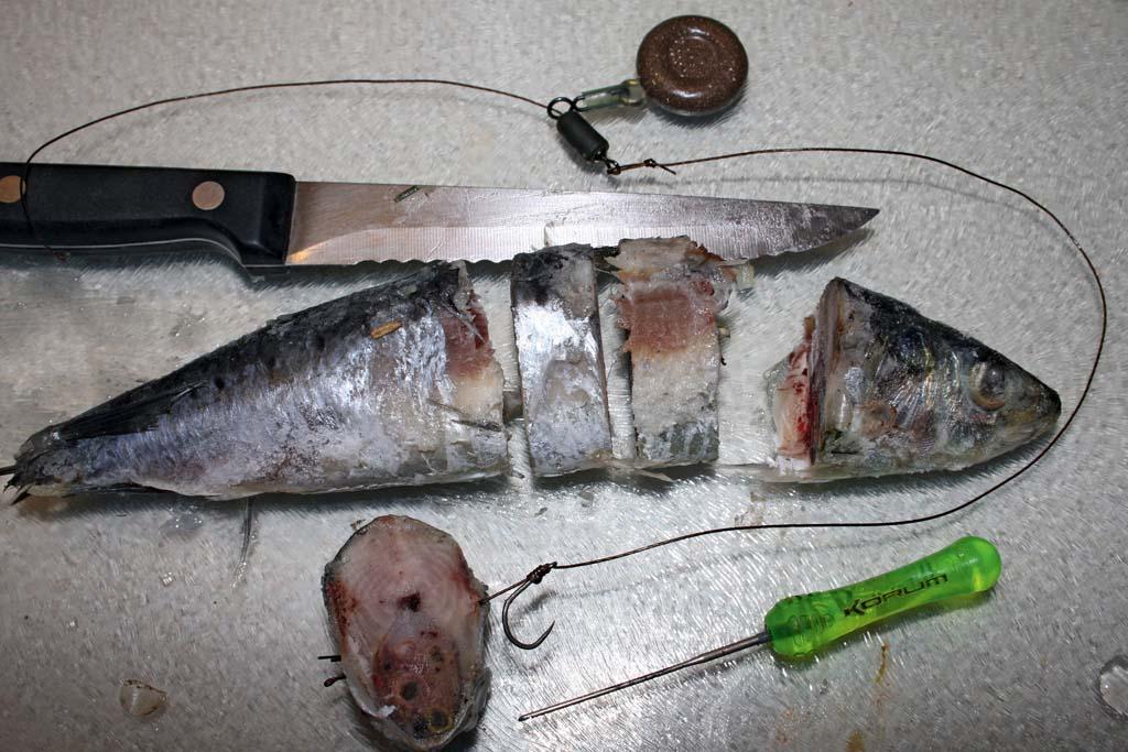 Eine gefrorene Sardine wird in Stücke geschnitten und eines davon am Haar angeködert. Die gefrosteten Fischstücke lassen sich gut werfen, der freie Haken fasst sicher im Zandermaul. Foto: BLINKER/D. Charman