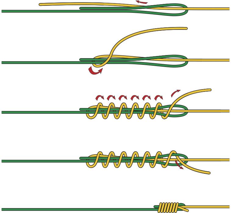 So wird der Albright-Knoten zum Fliegenfischen Schritt für Schritt gebunden. Grafik: BLINKER