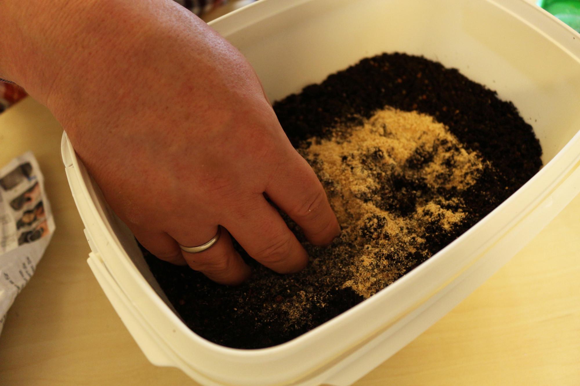Nun folgt ein wenig Wurmfutter, das in die Erde eingearbeitet wird. Foto: F. Pippardt