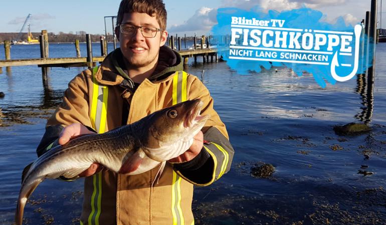 Dorsch- und Heringsangeln vom Boot: Fischkopp Robin mit einem dicken Ostsee-Dorsch der sich mit Heringen vollgefressen hat. Foto: Fischköppe