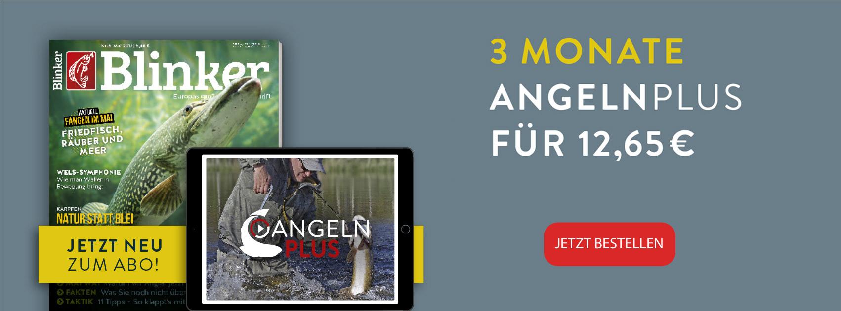angelnplus_banner