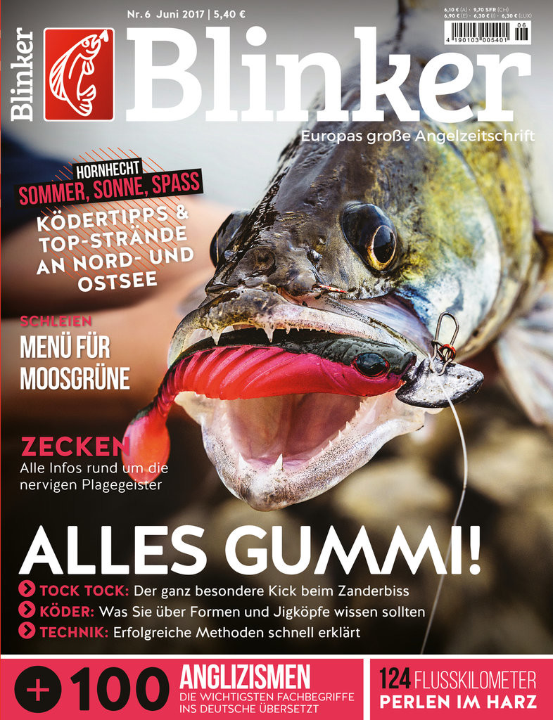 Blinker 06_17_Titel