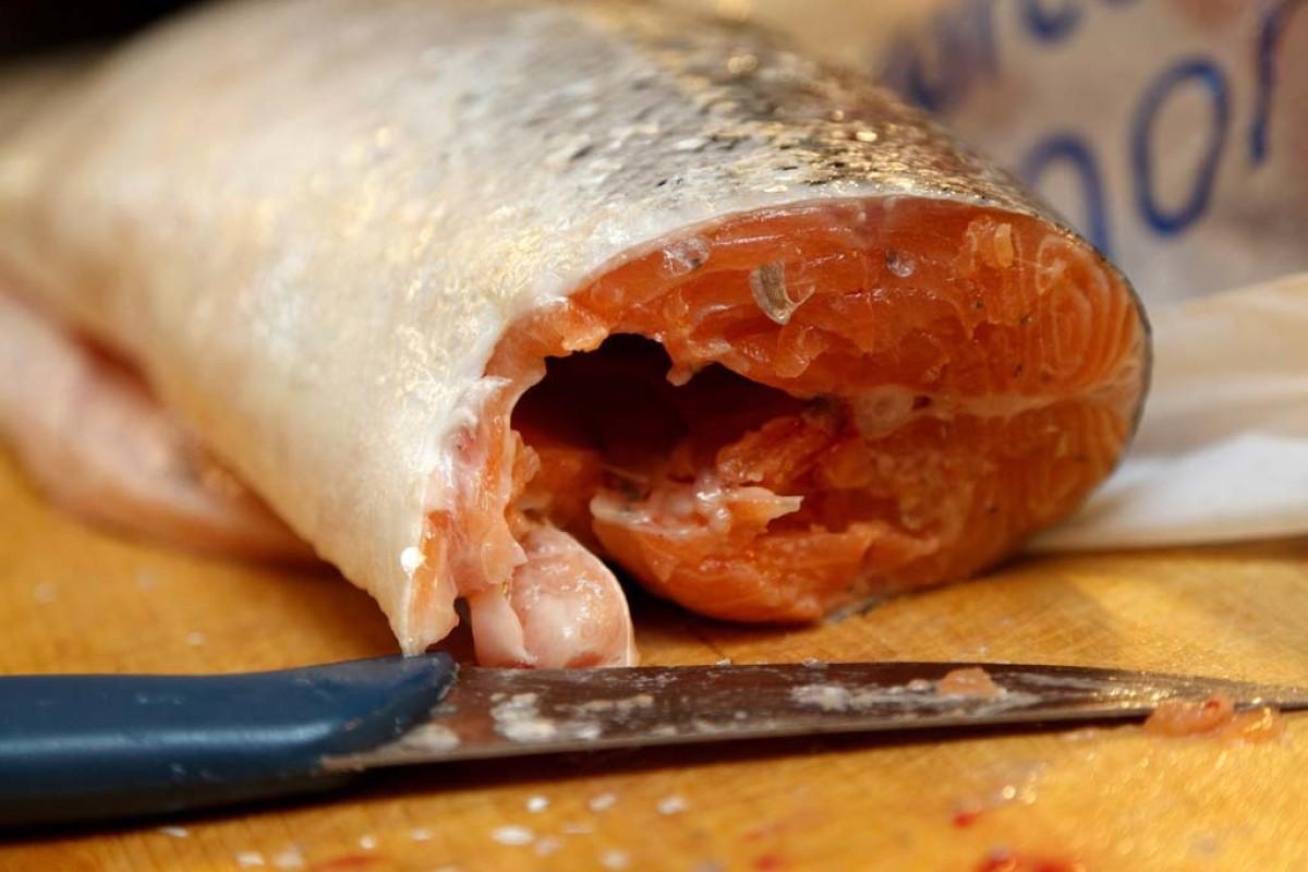 Fisch filetieren einfach gemacht. Mit unseren Tipps klappt's ganz sicher! Foto:pb/PublicDomainPictures