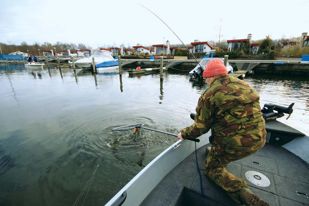 Wenn man einen Hecht landen möchte, muss Raubfischkescher muss lang und groß sein. Foto: BLINKER/ Bertus Rozemeijer
