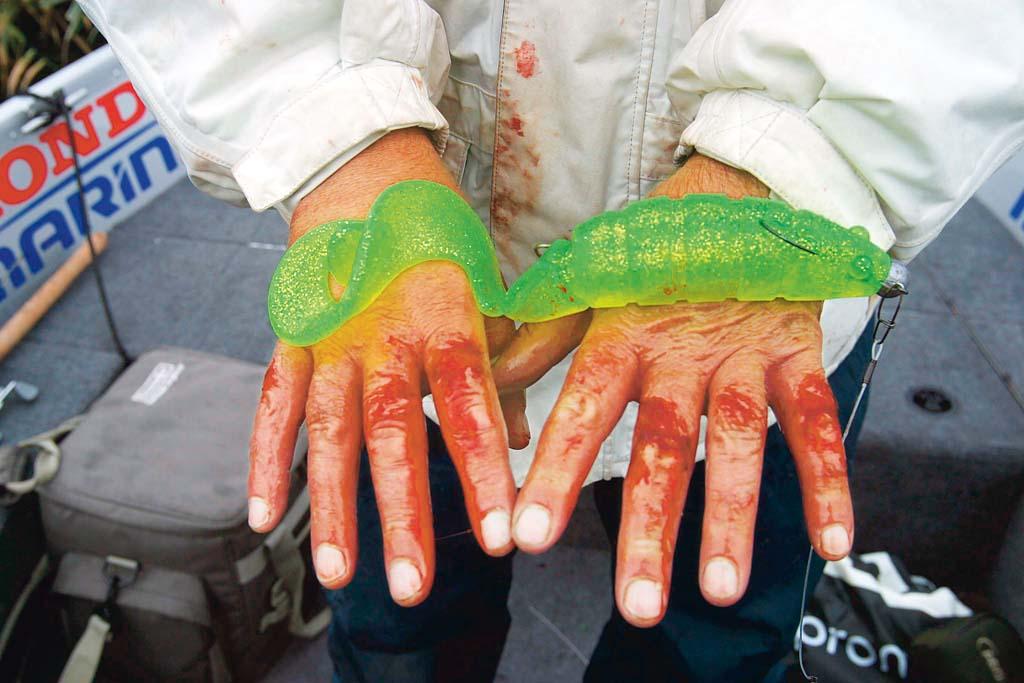 Ein falscher Griff – und schon gibt's Schrammen. Auch ein Profi kommt manchmal an blutigen Fingern nicht vorbei. Foto: BLINKER/ Bertus Rozemeijer