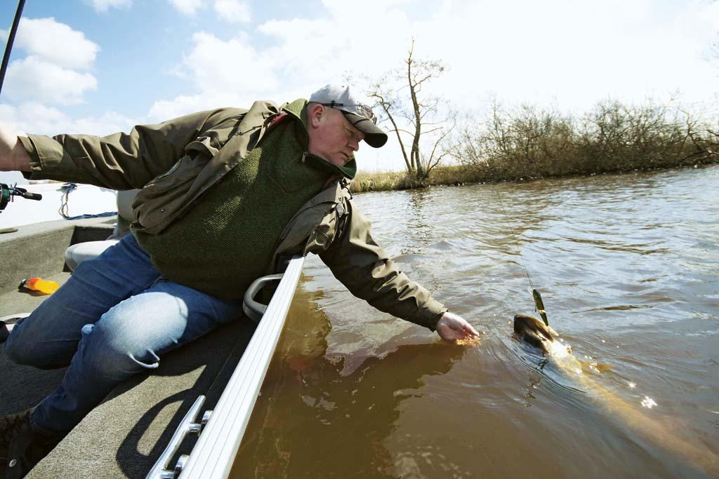 Dann führt man ihn ganz nah ans Boot...Foto: BLINKER/ Bertus Rozemeijer