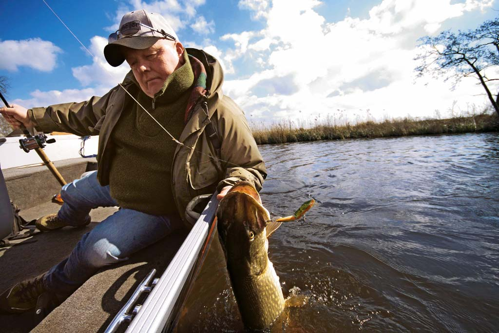 Um den Hecht ins Boot oder Ufer zu bekommen, drückt man den Daumen von außen gegen den Kiemendeckel und hebt den Fisch aus dem Wasser. Foto: BLINKER/ Bertus Rozemeijer