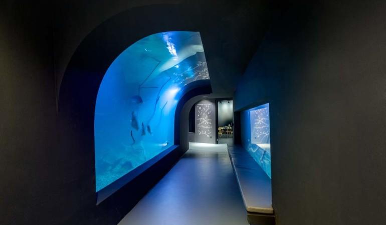 Aquarium Aquatika Kroatien Foto: Aquatika