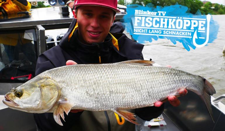 Auf dem Social Media Fishing Day 2017 in Hamburg, konnte Fischkopp Robin diesen Rapfen an einem Warmwassereinlauf fangen. Foto: Fischköppe