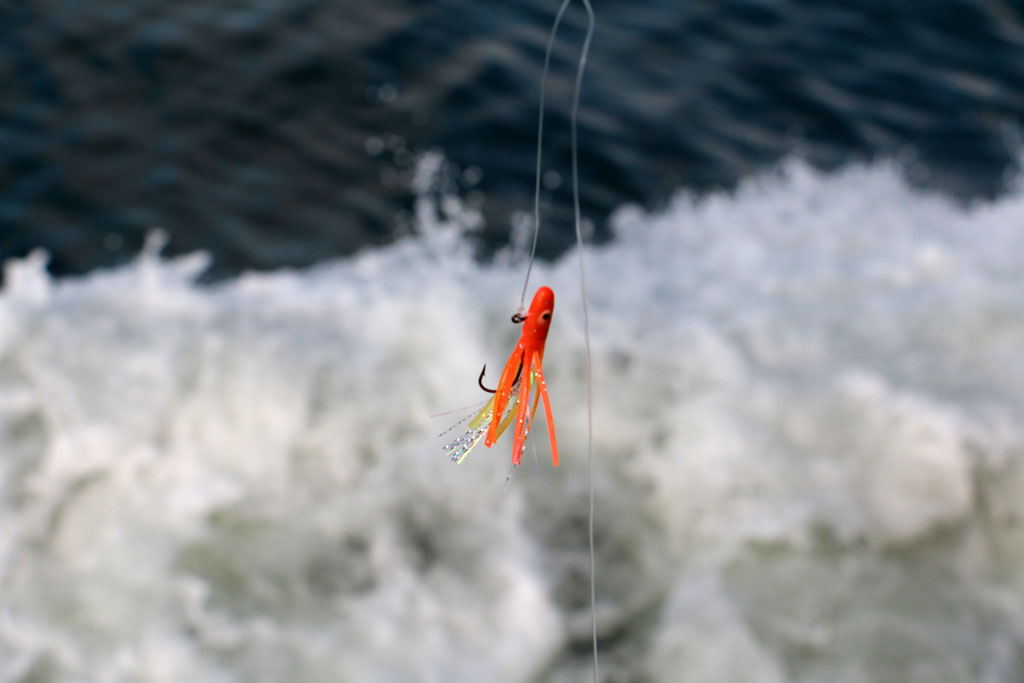 Je nach Beißlaune der Fische, kann die richtige Wahl der Köderfarben den entscheidenden Unterschied ausmachen. Foto: BLINKER/Ch. Hellwig