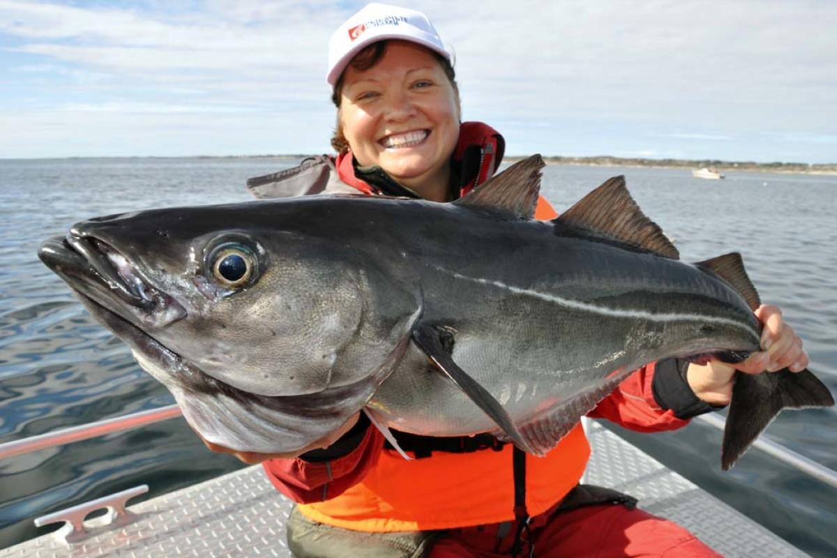 Neue Zollbestimmungen in Norwegen 2018. Dann dürfen je nach Touristenfischereibetrieb 20 Kilogramm bzw. 10 Kilogramm Fisch nach Deutschland eingeführt werden. Foto: BLINKER/R. Schwarzer