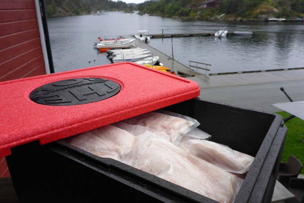 Wer in Norwegen angeln geht und fisch mktnehmen möchte, muss sich an die gesetzlichen Grundlagen halten. Foto: BLINKER/J. Radtke