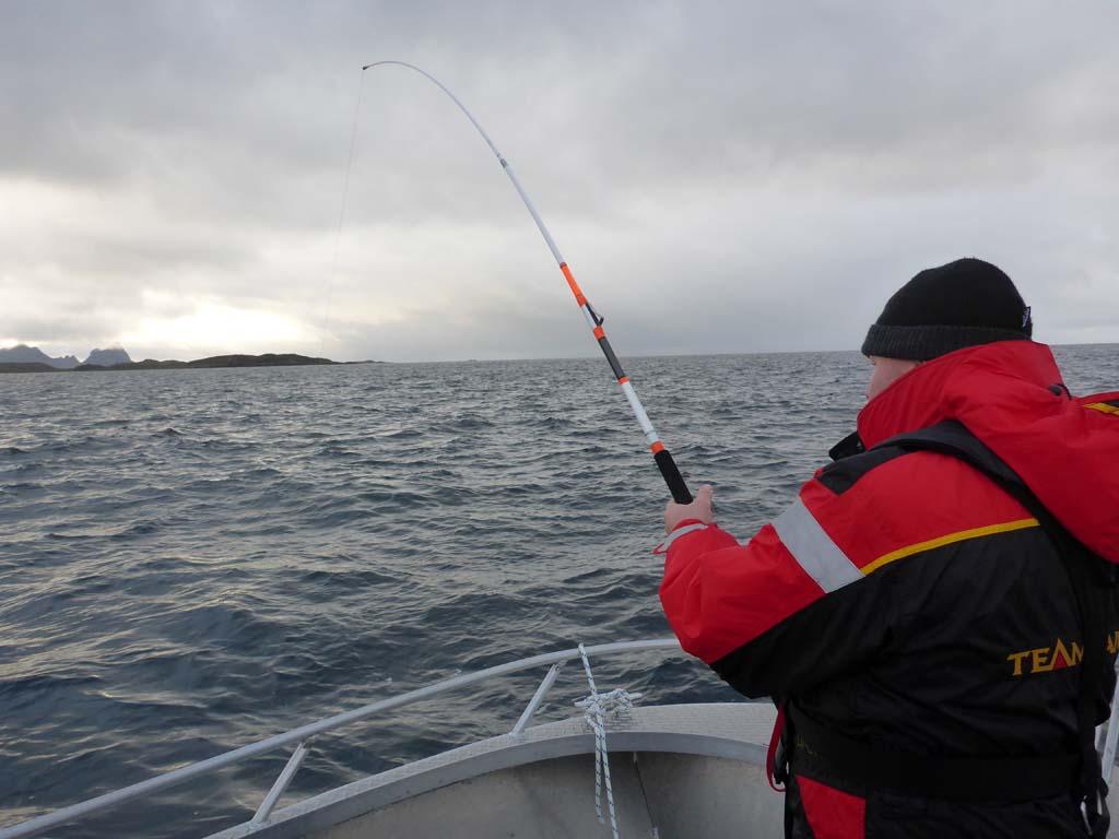 Nur mit dem richtigen Gerät, kann man erfolgreich auf Leng angeln. Foto: BLINKER/S. Kaufmann