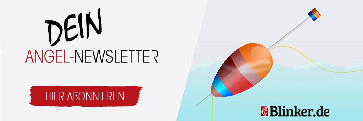 Der BLINKER-Newsletter. Hier kostenlos abonnieren!