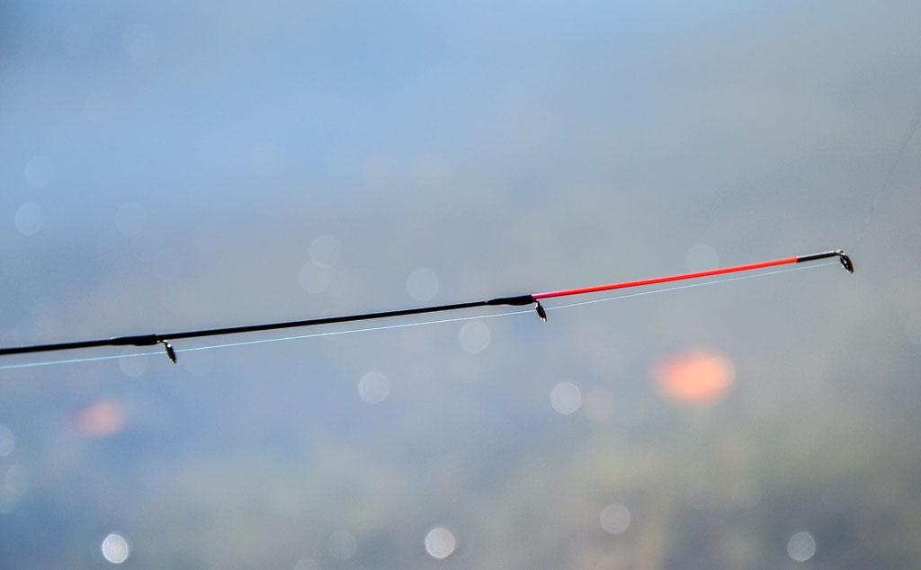 Leichte Feederruten haben sensible Spitzen, die jeden Zupfer anzeigern. Foto: BLINKER/D. Schröter