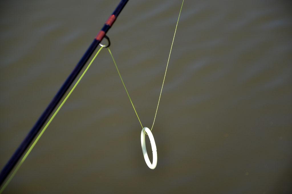 Der Einhänge-Ring ist ebenso preiswerter wie sensibler Bissanzeiger. Foto: BLINKER/D. Schröder